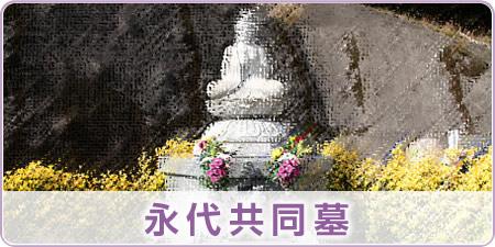 永代供養の共同墓