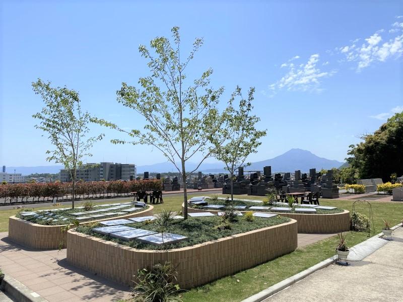 見学会当日樹木葬区画の写真